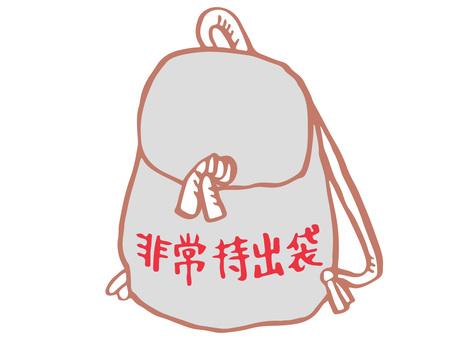 Emergency carry bag