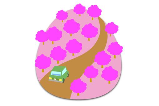 Drive the Sakura mountain path