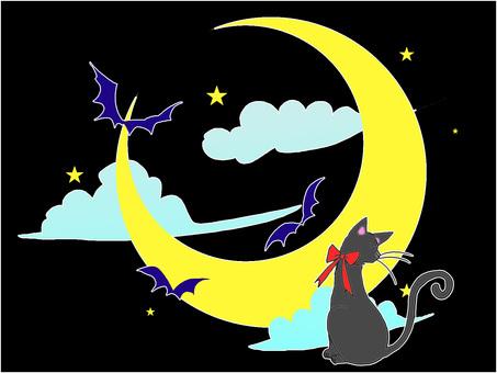 Crescent night sky black cat