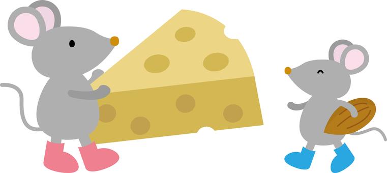 치즈와 견과류를 가진 쥐의 친자