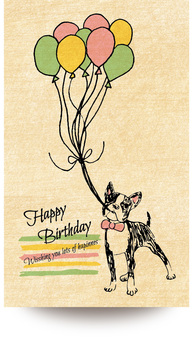 Birthday Card Boston Terrier