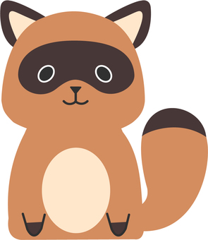 【Animals】 Raccoon