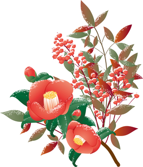 Illustration of camellia and southern sky and snow