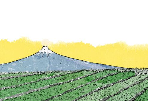 富士山と茶畑日の出前(透過)