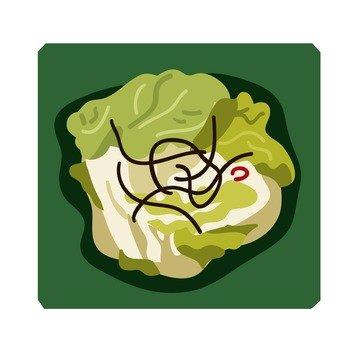 中國泡菜的白菜2