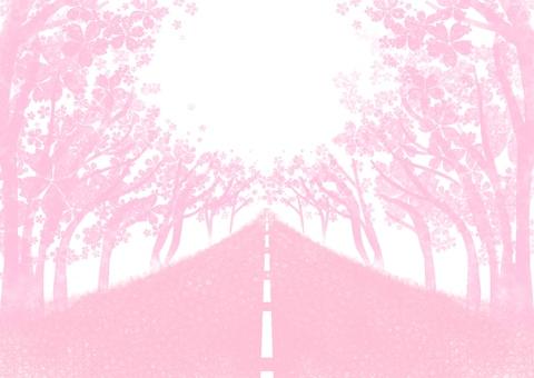 Sakura no Hanamichi