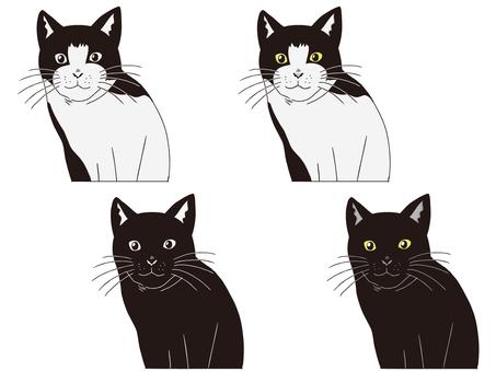 Cat's Cat series