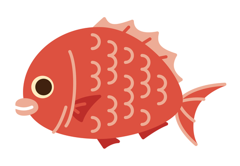 海中的生物 - 鯛魚