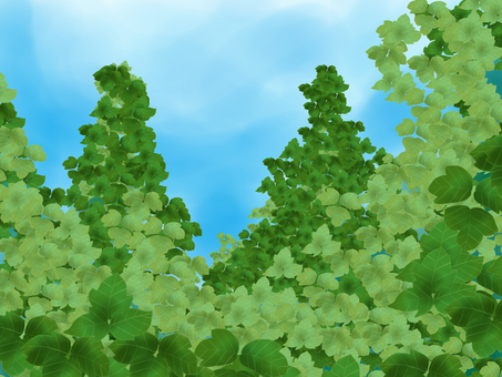 칡 (쓰레기)의 숲