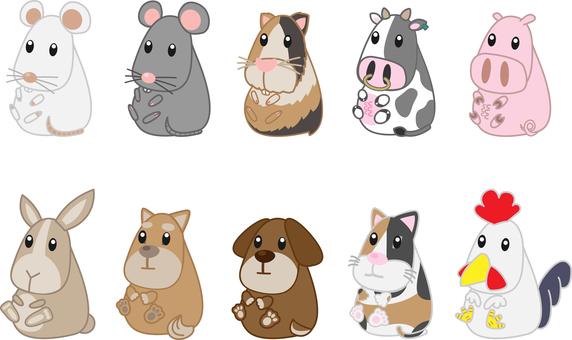 Zoo animals set 5