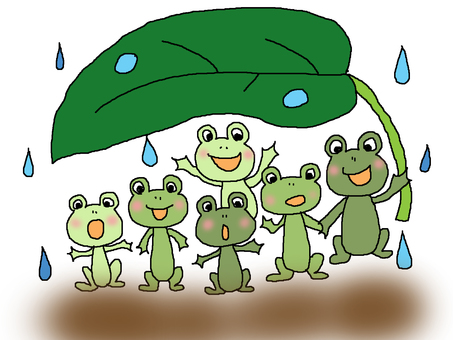 Rain shelter of frog