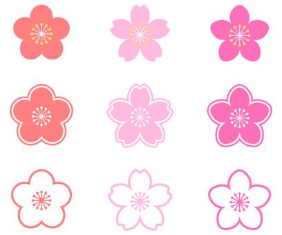 매화 · 벚꽃 · 복숭아 꽃