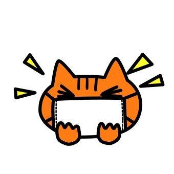 Cat putting a mask