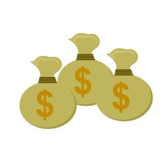 Dollar Bag 2