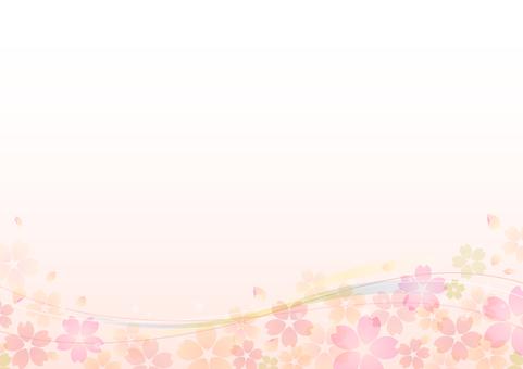 Cherry blossoms 130