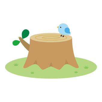 stump
