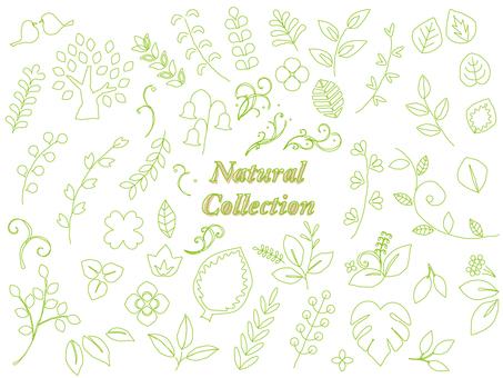 Hand-drawn line set of natural materials