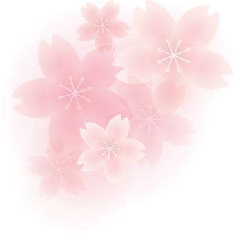 벚꽃의 원 포인트