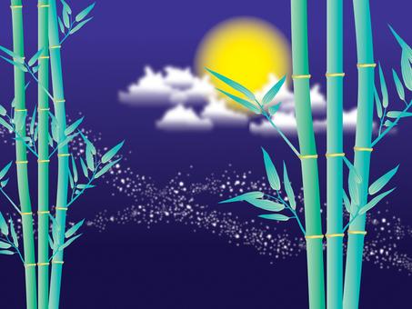 Bamboo _ night