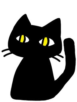 Black cat deformation