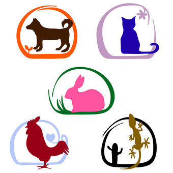 Animals icon various