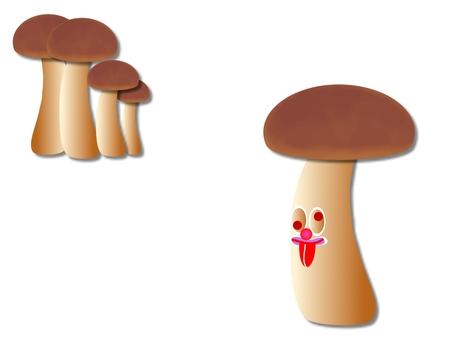 버섯과 버섯의 의인화