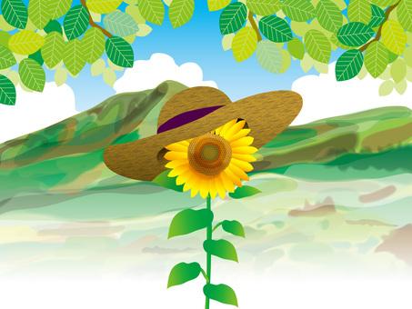向日葵和山脈(8)一個輪子和草帽