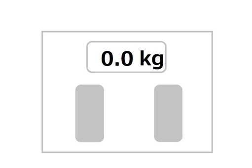 Weight scale 099