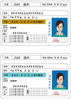 Driver's license (male) 2 patterns