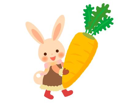 Usagi and carrot ♪