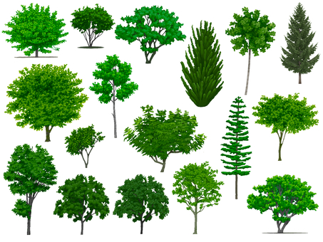 various trees (2)