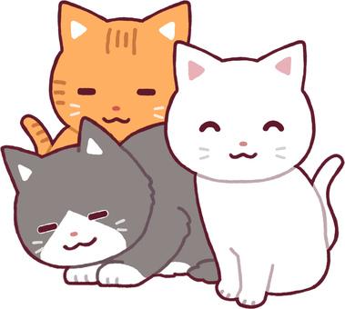 고양이의 모임