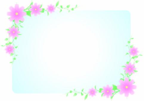 Flower & Reef Frame 5