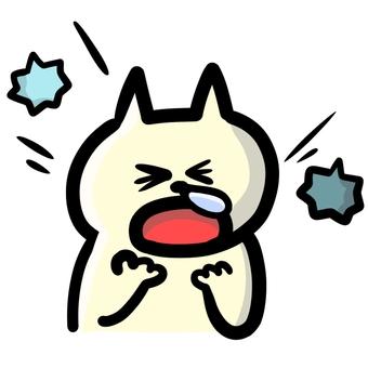 A cat sneezing