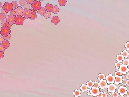 Background - plum 11