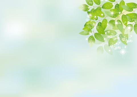 Glittering leaves & sky 1