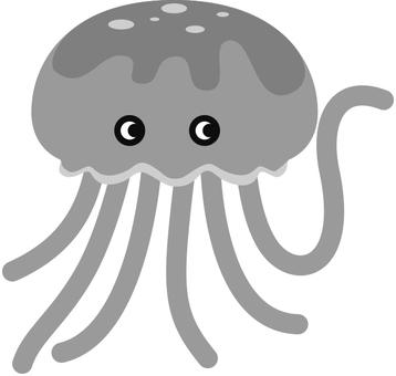 해파리 Jellyfish