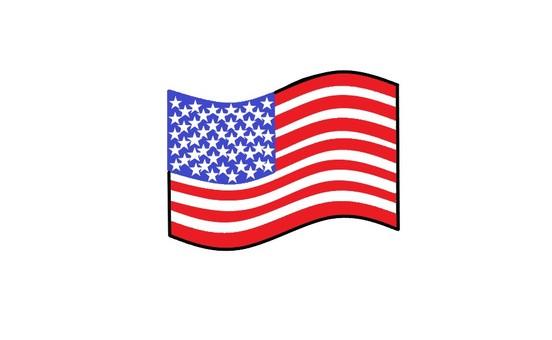 National flag (USA)