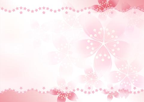 Sakura Sakura Line 6
