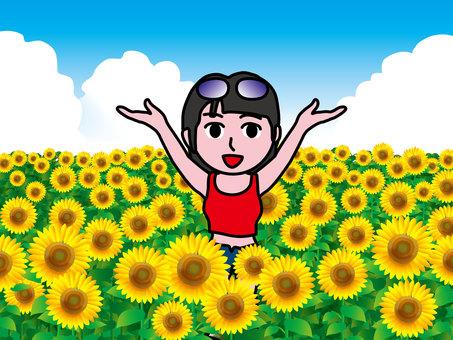 Sunflower field (16) Banzai Girls B