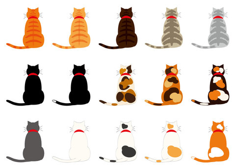 Cats (15 rear view set without contour)