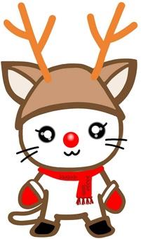 Reindeer hat cat christmas