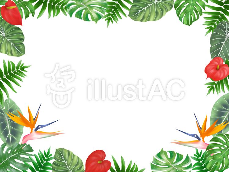 熱帯植物フレーム(横)