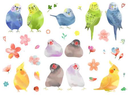 Inko watercolor