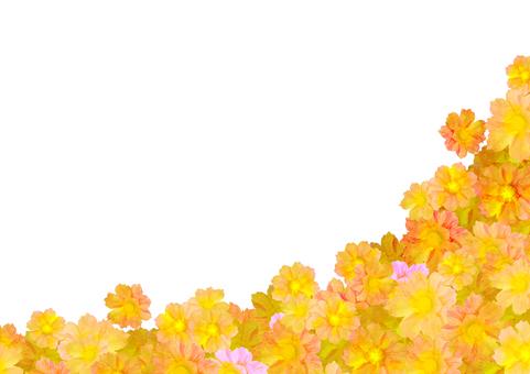 Cosmos background yellow