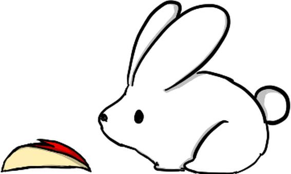 Rabbit and a rabbit?