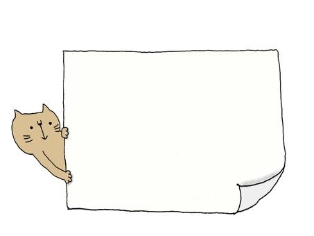 Peek cat message board