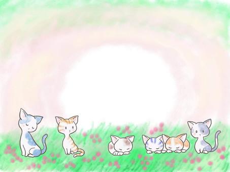 Grass cats