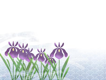 花フレーム (花菖蒲) 14