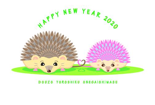 2020 고슴도치 쌍 연하장
